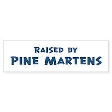 Raised by Pine Martens Bumper Bumper Sticker