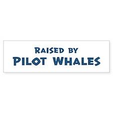 Raised by Pilot Whales Bumper Bumper Sticker