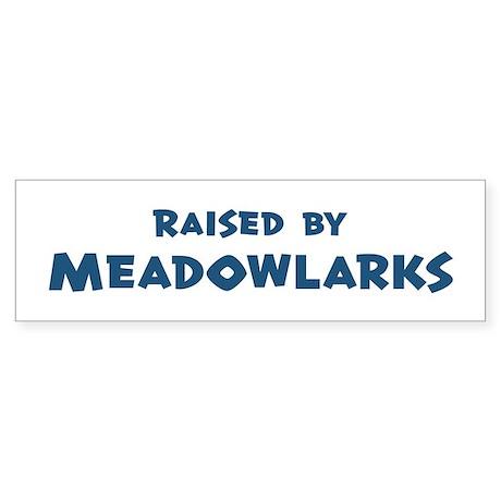 Raised by Meadowlarks Bumper Sticker