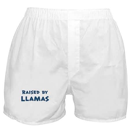Raised by Llamas Boxer Shorts