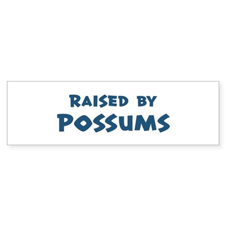 Raised by Possums Bumper Sticker