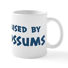 Raised by Possums Mug