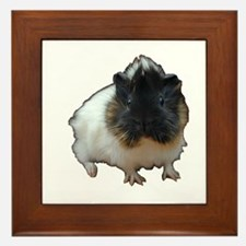 Framed Tile with Cute Baby Guinea Pig