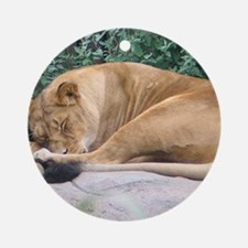 Sleepy Lioness Keepsake (Round)