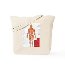 Cute Anatomy Tote Bag