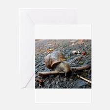 Sammy the Snail Greeting Cards