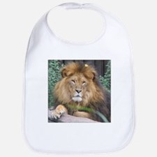 Male Lion Portrait Bib