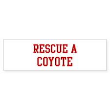 Rescue Coyote Bumper Bumper Sticker