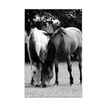 B&W Pony Love Mini Poster Print