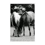 B&W Pony Love Mini Poster Print