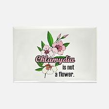 Chlamydia Flower Rectangle Magnet