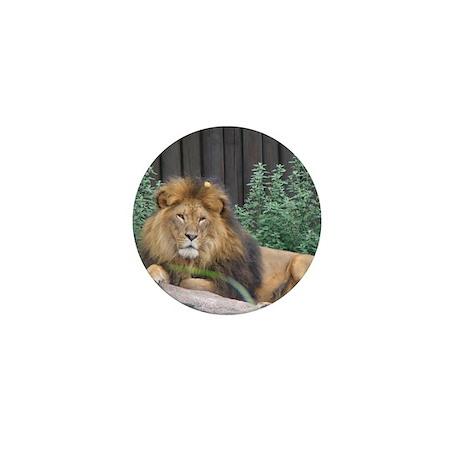Male Lion Full Body Mini Button (10 pack)