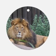 Male Lion Full Body Keepsake (Round)