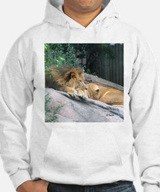 Picturesque Lions Hoodie