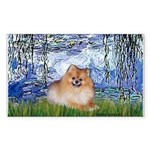 Lilies #6/Pomeranian #4 Sticker (Rectangle)