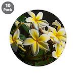 Aloha Flowers 3.5