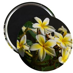 Aloha Flowers 2.25