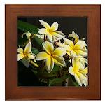 Aloha Flowers Framed Tile