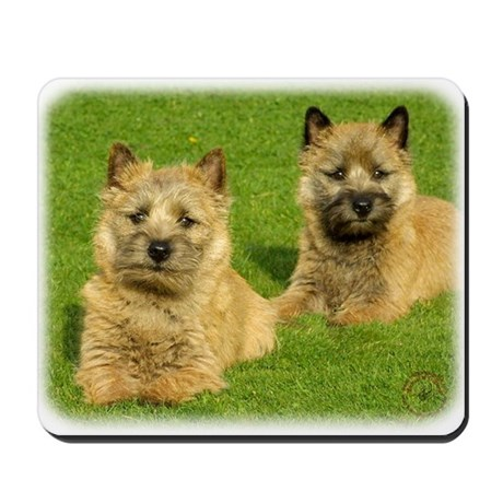 Cairn Terrier puppies 9W048D-035 Mousepad
