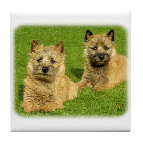 Cairn Terrier puppies 9W048D-035 Tile Coaster