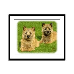 Cairn Terrier puppies 9W048D-035 Framed Panel Prin