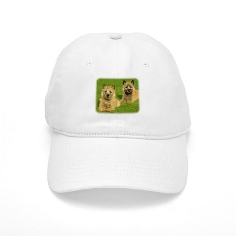 Cairn Terrier puppies 9W048D-035 Cap