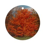 Autumn Keepsake Ornament (Round)