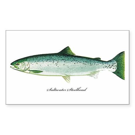 Wild Saltwater Steelhead Fish Rectangle Sticker