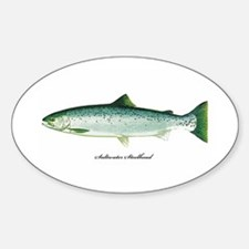 Wild Saltwater Steelhead Fish Oval Decal