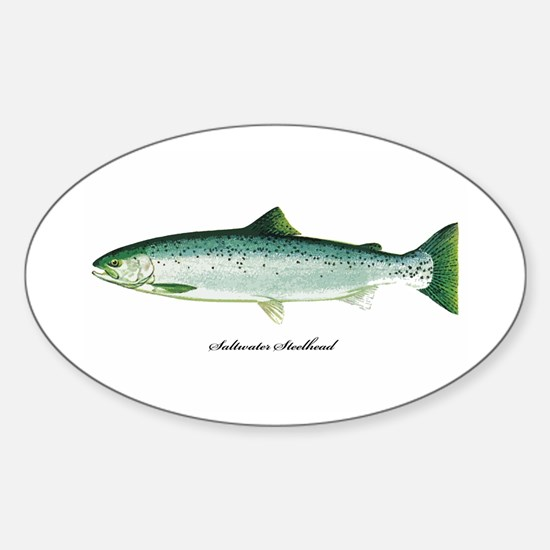 Wild Saltwater Steelhead Fish Oval Decal