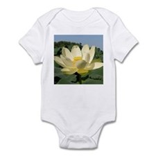 Water Lotus, Flower, Infant Creeper
