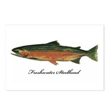 Freshwater Steelhead Trout Postcards (Package of 8