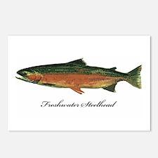 Freshwater Steelhead Trout Postcards (Package of 8