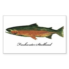 Freshwater Steelhead Trout Rectangle Decal