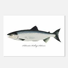 Saltwater Sockeye Salmon Postcards (Package of 8)