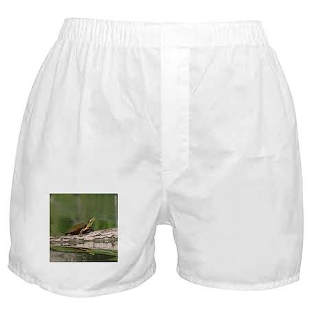 Turtle, Boxer Shorts