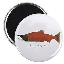 """Sockeye Salmon 2.25"""" Magnet (10 pack)"""