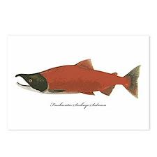 Sockeye Salmon Postcards (Package of 8)