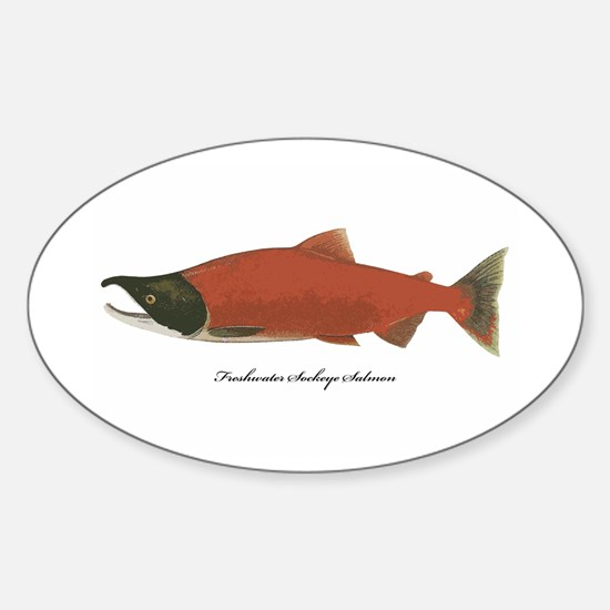 Sockeye Salmon Oval Decal