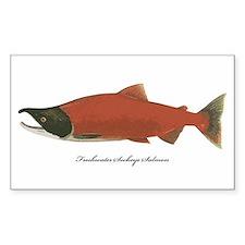 Sockeye Salmon Rectangle Decal
