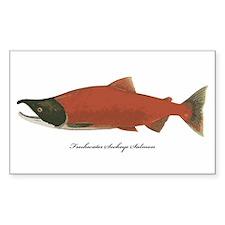 Sockeye Salmon Rectangle Sticker 10 pk)