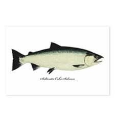 Coho Silver Salmon Postcards (Package of 8)