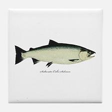 Coho Silver Salmon Tile Coaster