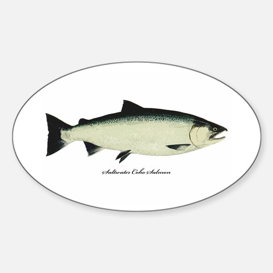Coho Silver Salmon Oval Decal