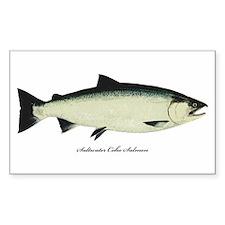 Coho Silver Salmon Rectangle Sticker 10 pk)