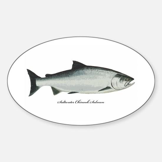 Chinook King Salmon Oval Decal