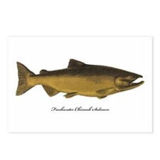 Chinook King Salmon Postcards (Package of 8)