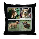 Goldens of Many Talents Throw Pillow