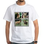 Goldens of Many Talents White T-Shirt
