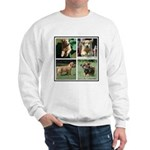 Goldens of Many Talents Sweatshirt